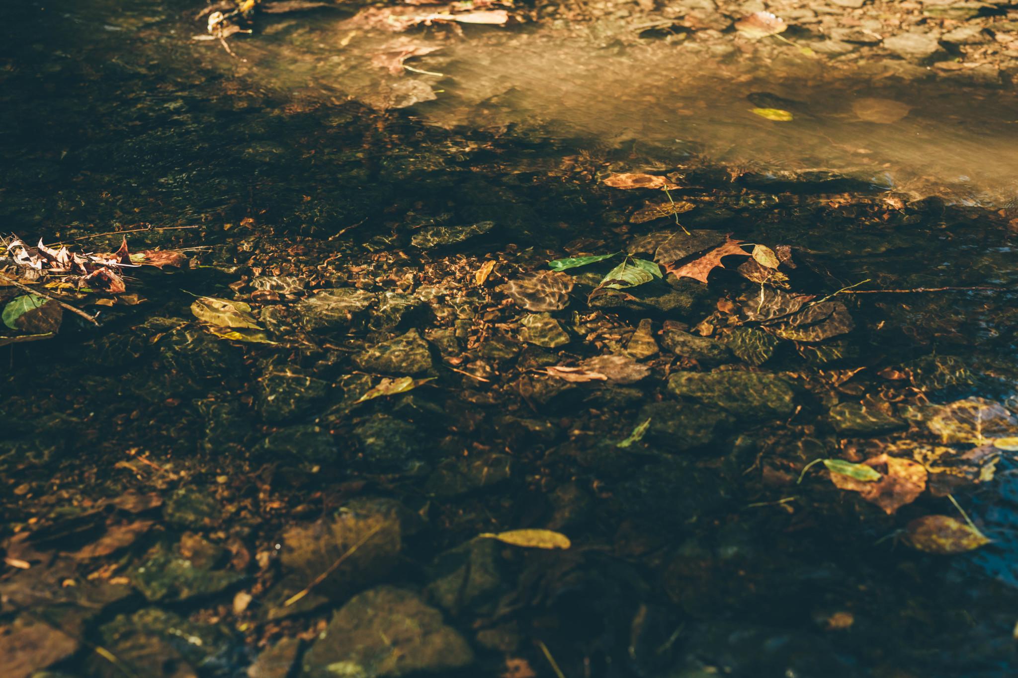 nashvillebrentwoodweddingphotographer